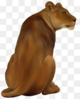 Lioness png vectors psd. Back clipart lion