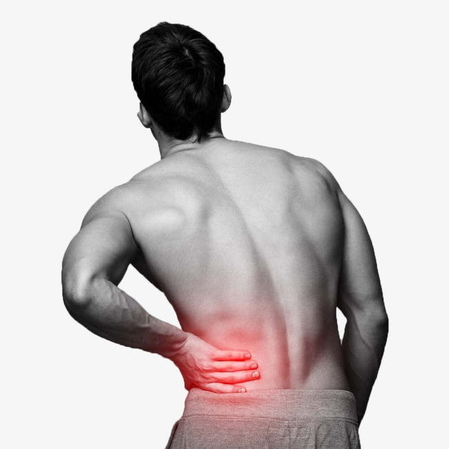 Lumbago png image and. Back clipart muscle pain