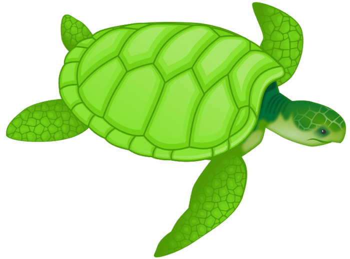 Free and animations sea. Valentine clipart turtle