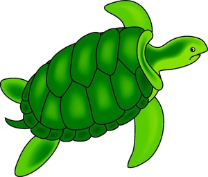 Back clipart sea turtle. Image green swimming underwater