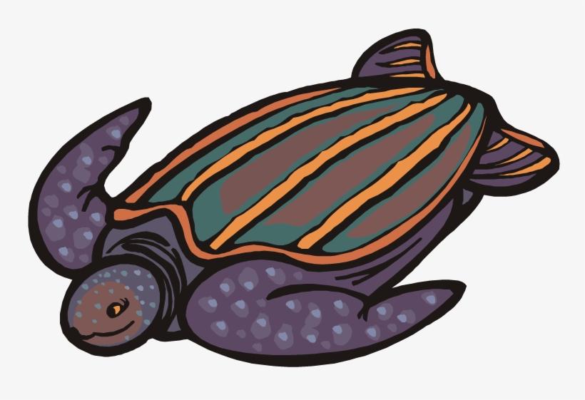 Cartoon png transparent . Back clipart sea turtle