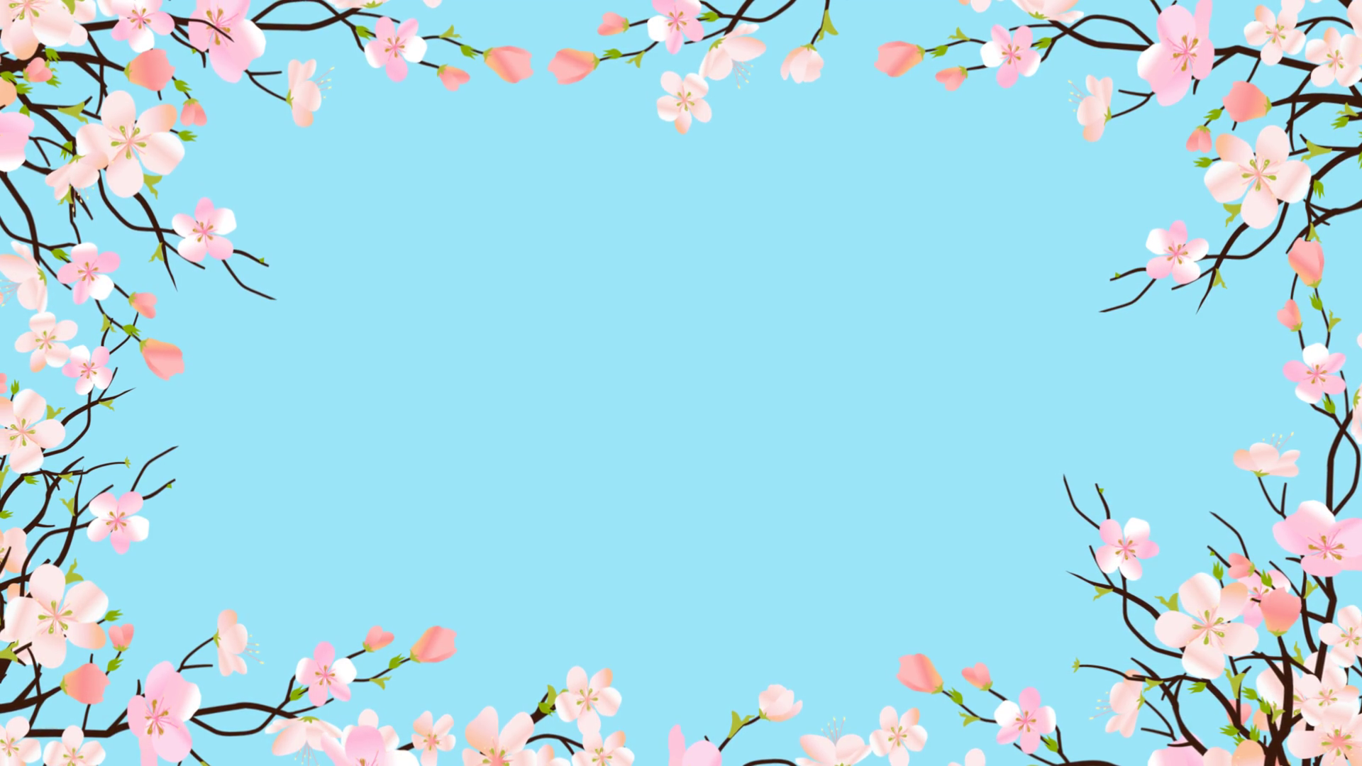Background clipart cherry blossom. Easter frame from spring