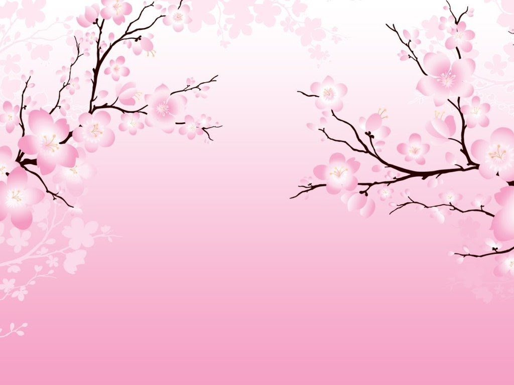 collection of high. Background clipart cherry blossom