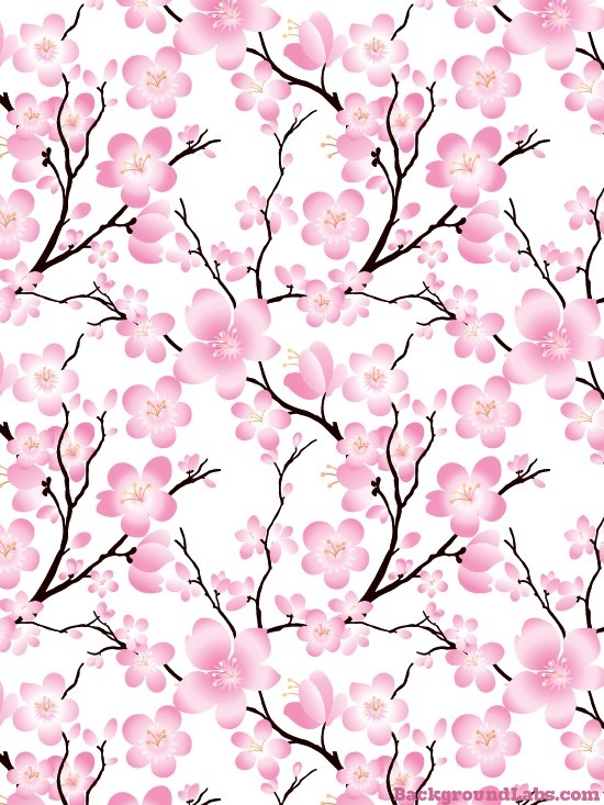 collection of wallpaper. Background clipart cherry blossom