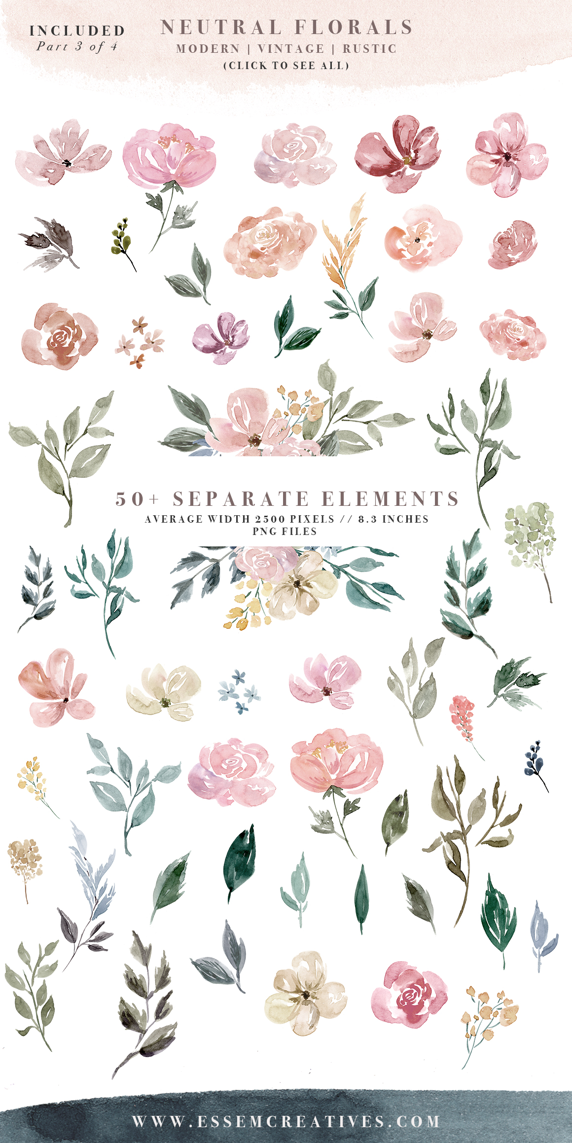Neutral watercolor flowers borders. Background clipart floral