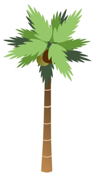 Coconut white clip art. Background clipart palm tree