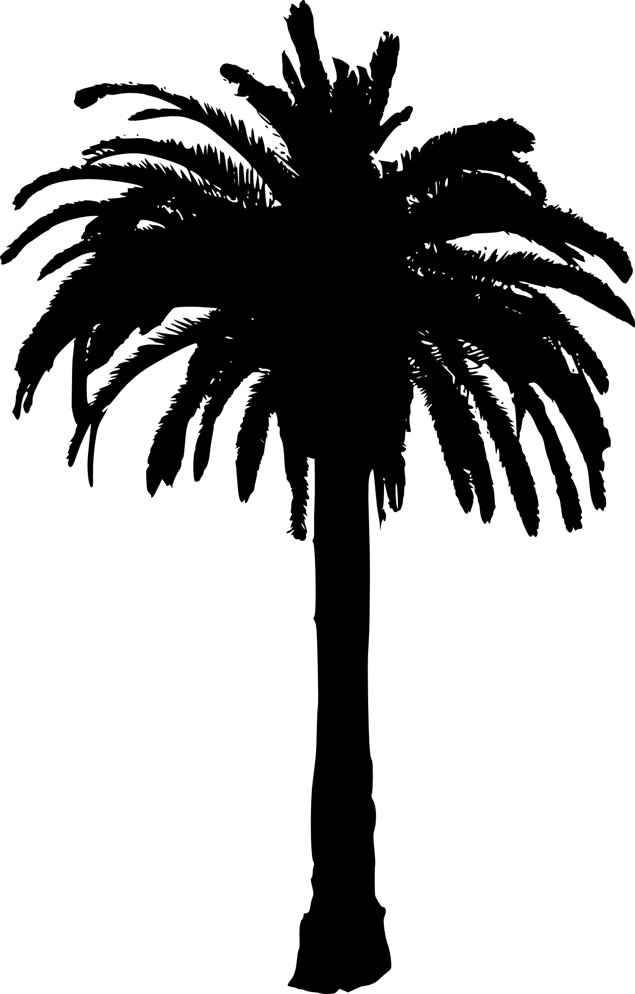 palm silhouettes png. Woodland clipart leafy tree