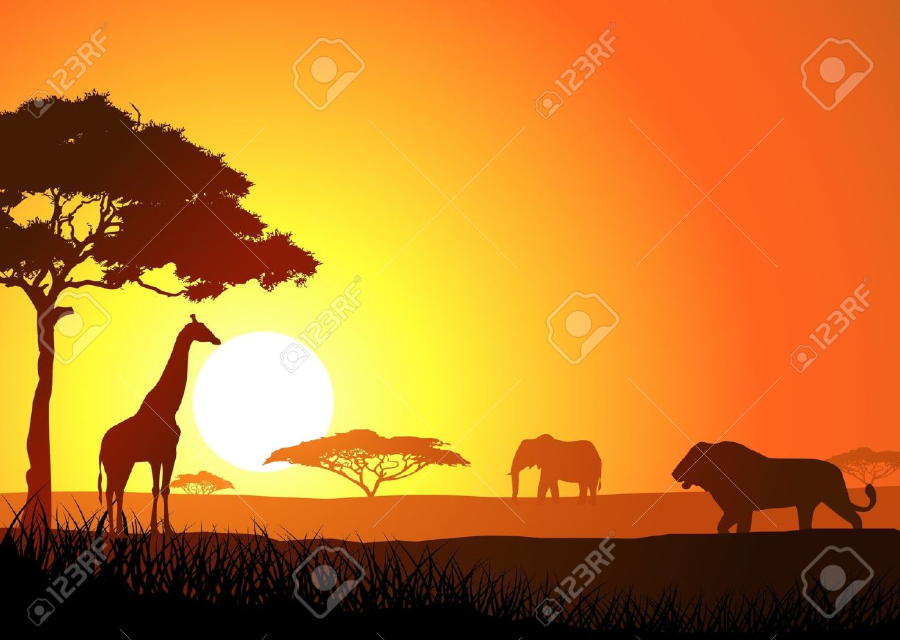 African savanna pencil and. Background clipart sunset