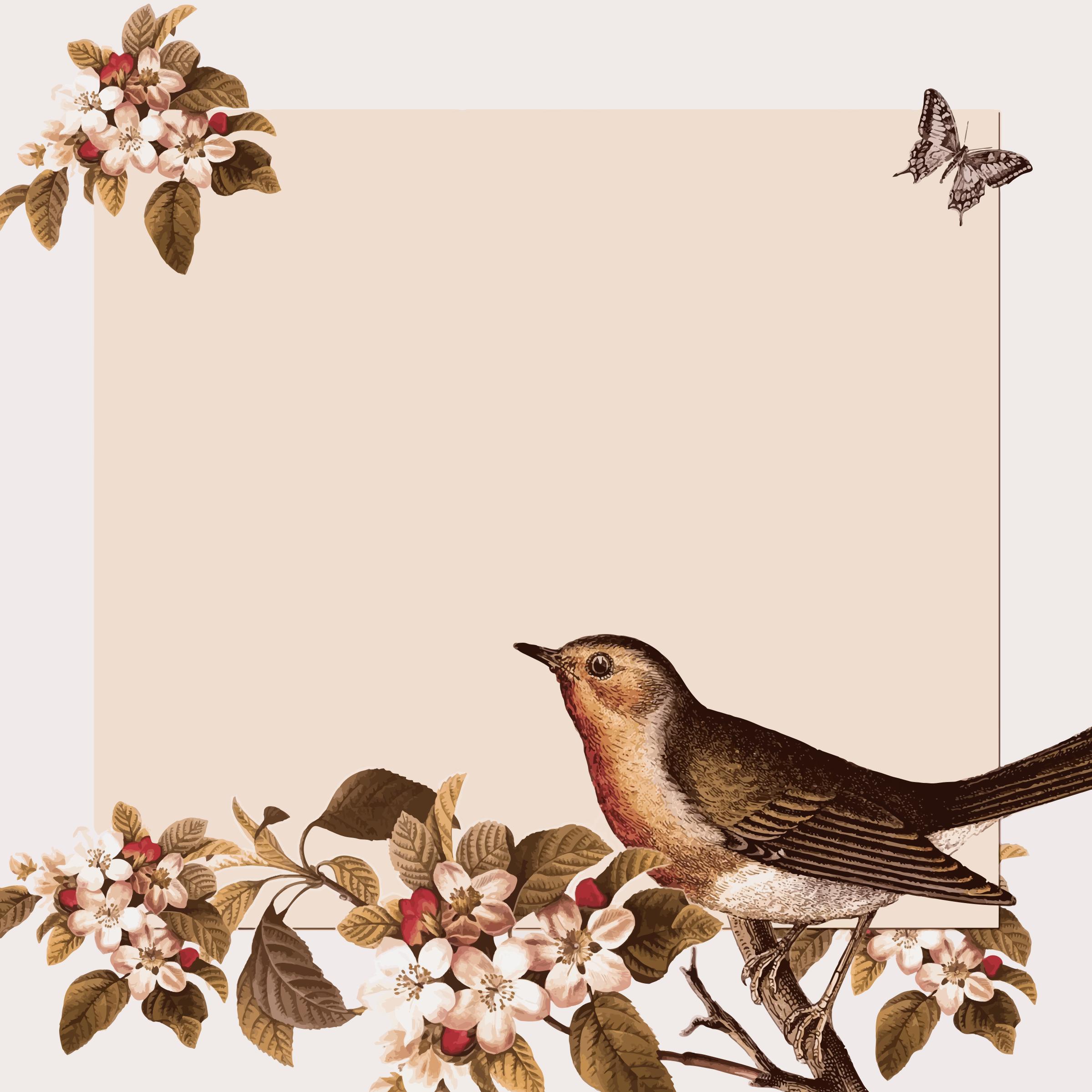Background clipart vintage. Bird and floral big