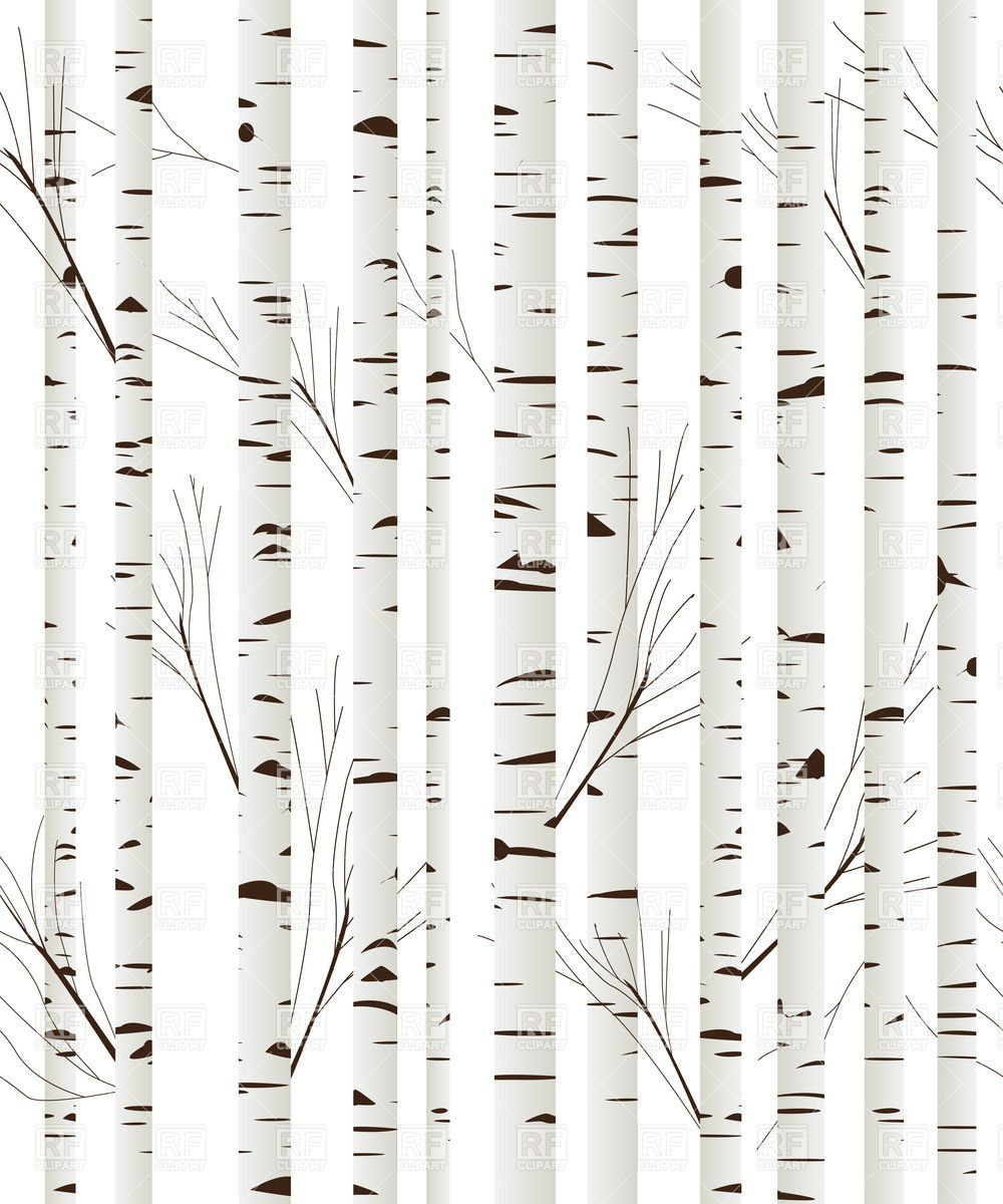 Background clipart woodland. Birch wood trees vector