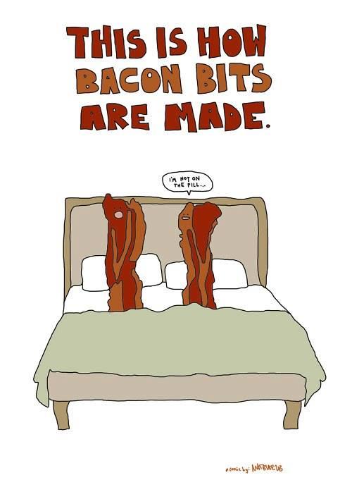 Bacon bacon bit