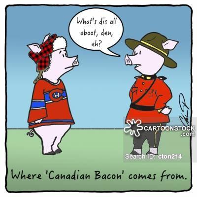 Cartoons and comics funny. Bacon clipart canadian bacon