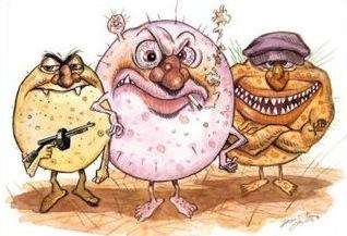 Bacteria clipart bad bacteria. Ks tx images badbacteriajpg
