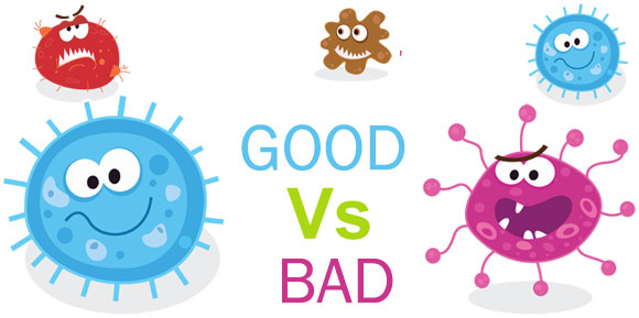 Bad clipart microbe. Good vs bacteria the