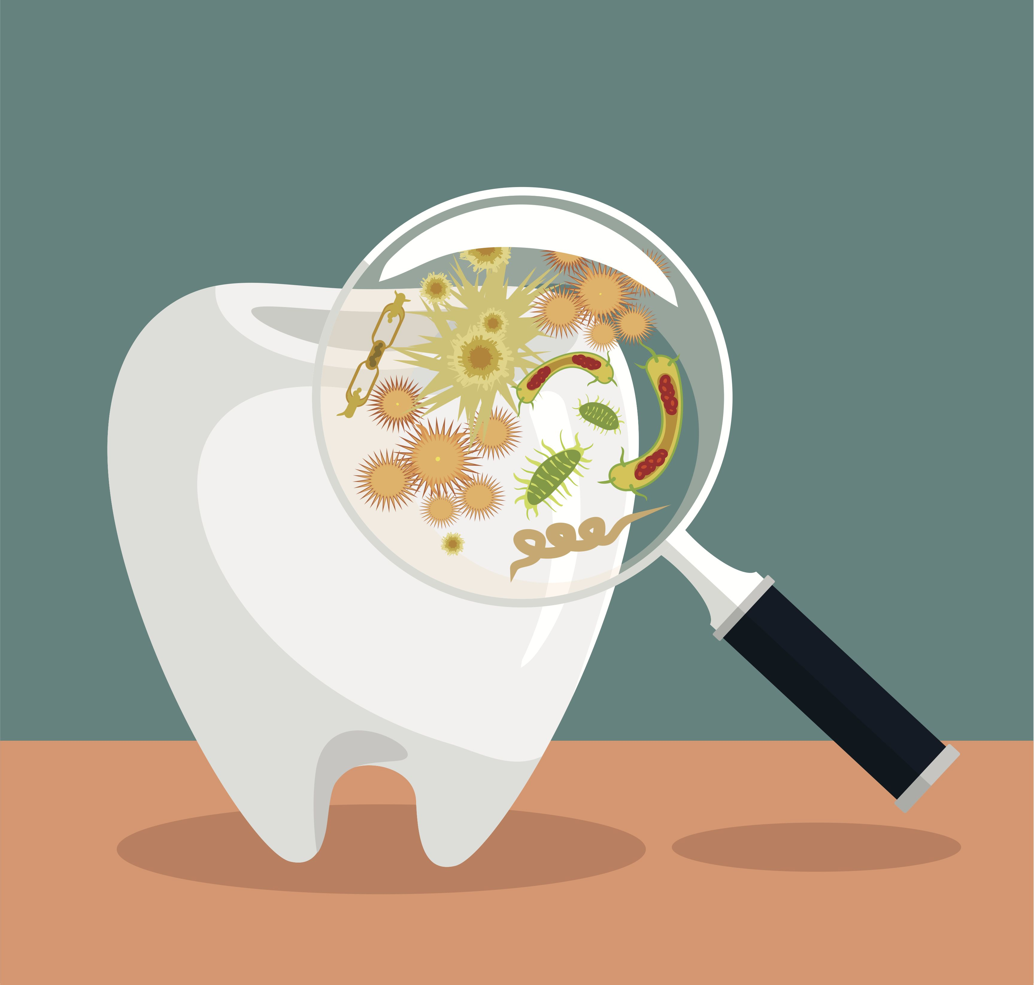 Bacteria clipart bad bacteria. In my own mouth