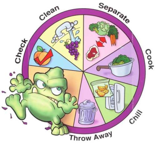 Issue avoid intestinal distress. Bacteria clipart food poisoning