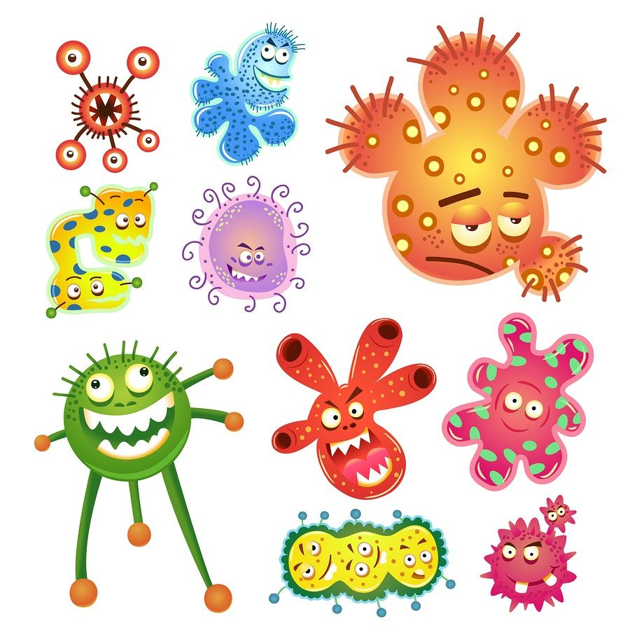 Bacteria clipart fungus bacteria. And virus cartoon previously
