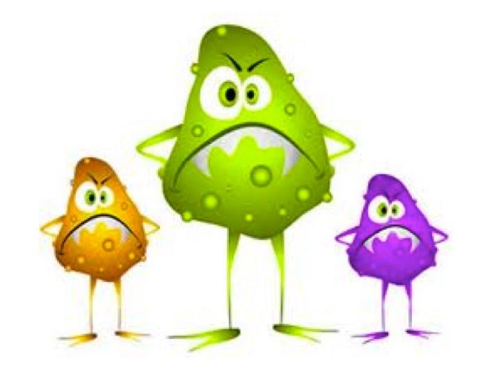 Mrs flint s classroom. Bacteria clipart harmful bacteria