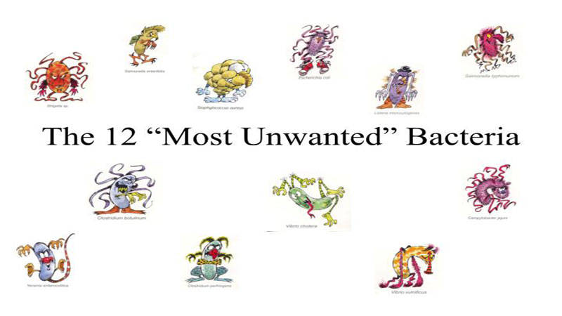 Who names that pose. Bacteria clipart human
