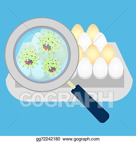 Bacteria clipart salmonella. Vector art eggs with