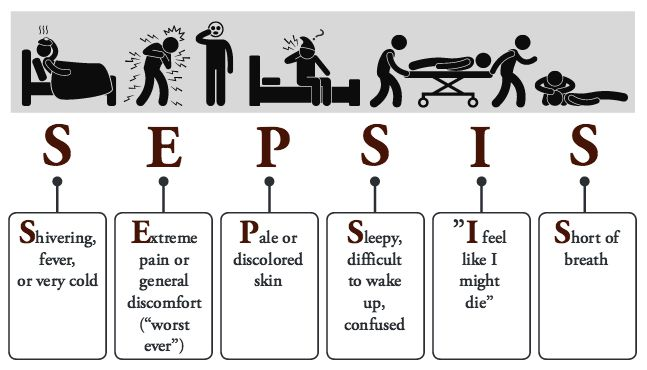 Bacteria clipart sepsis. September is awareness month