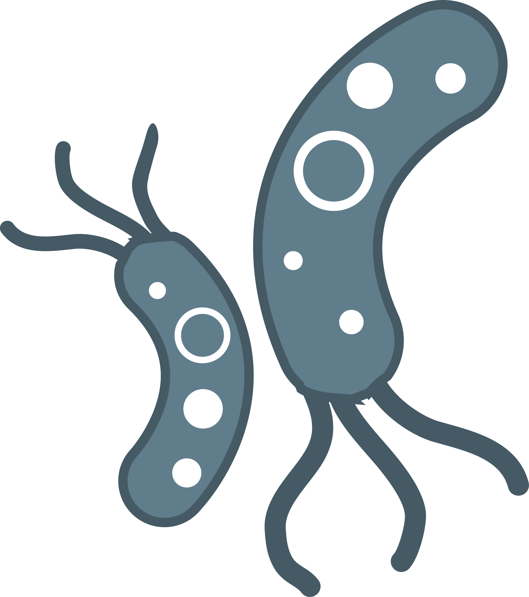 Png hd images pluspng. Bacteria clipart transparent background