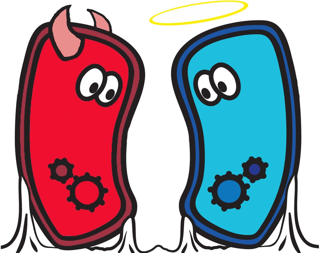 Microbes science news every. Bad clipart microbe