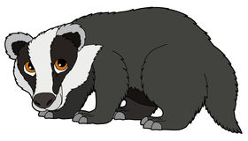 Panda free images badgerclipart. Badger clipart