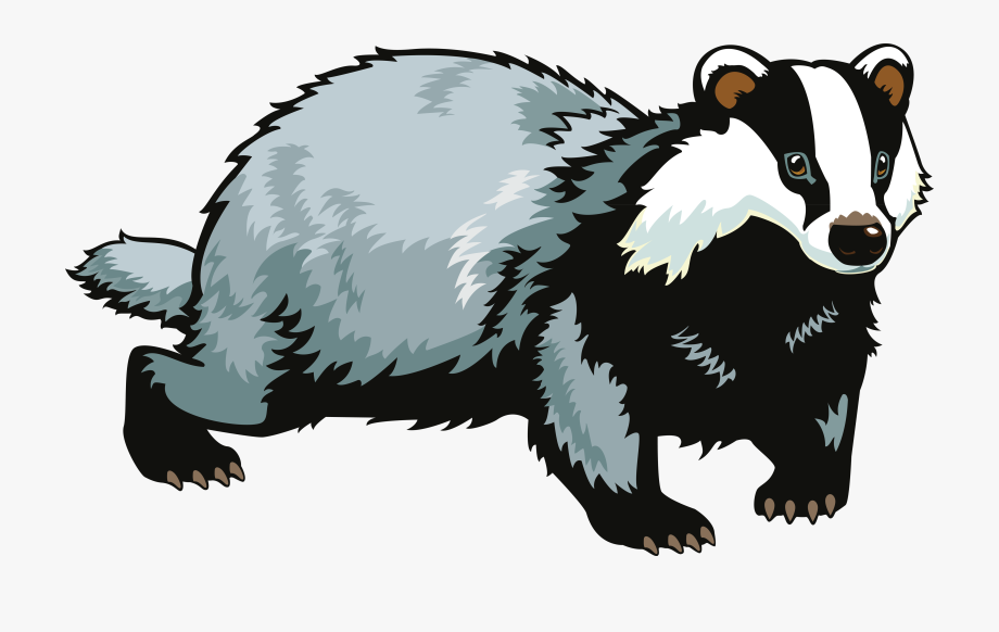 Png free cliparts on. Badger clipart