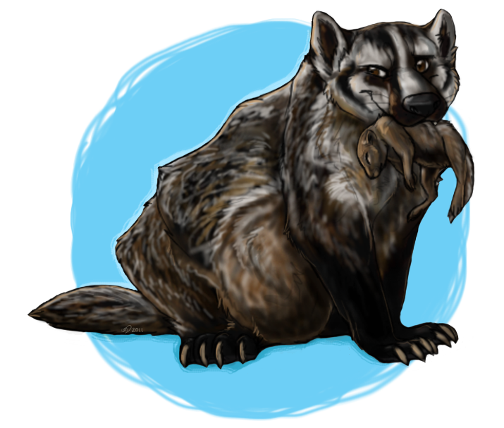 Badger clipart american badger. By booyeh on deviantart