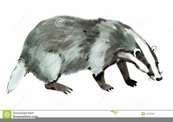 Free images at clker. Badger clipart ant eater