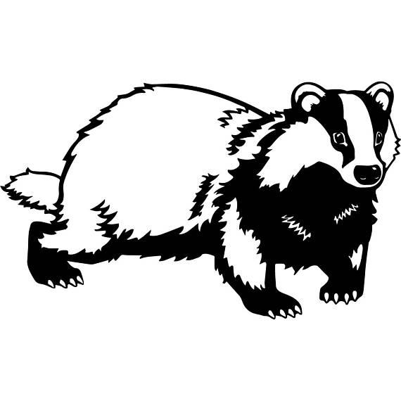 Badger svg