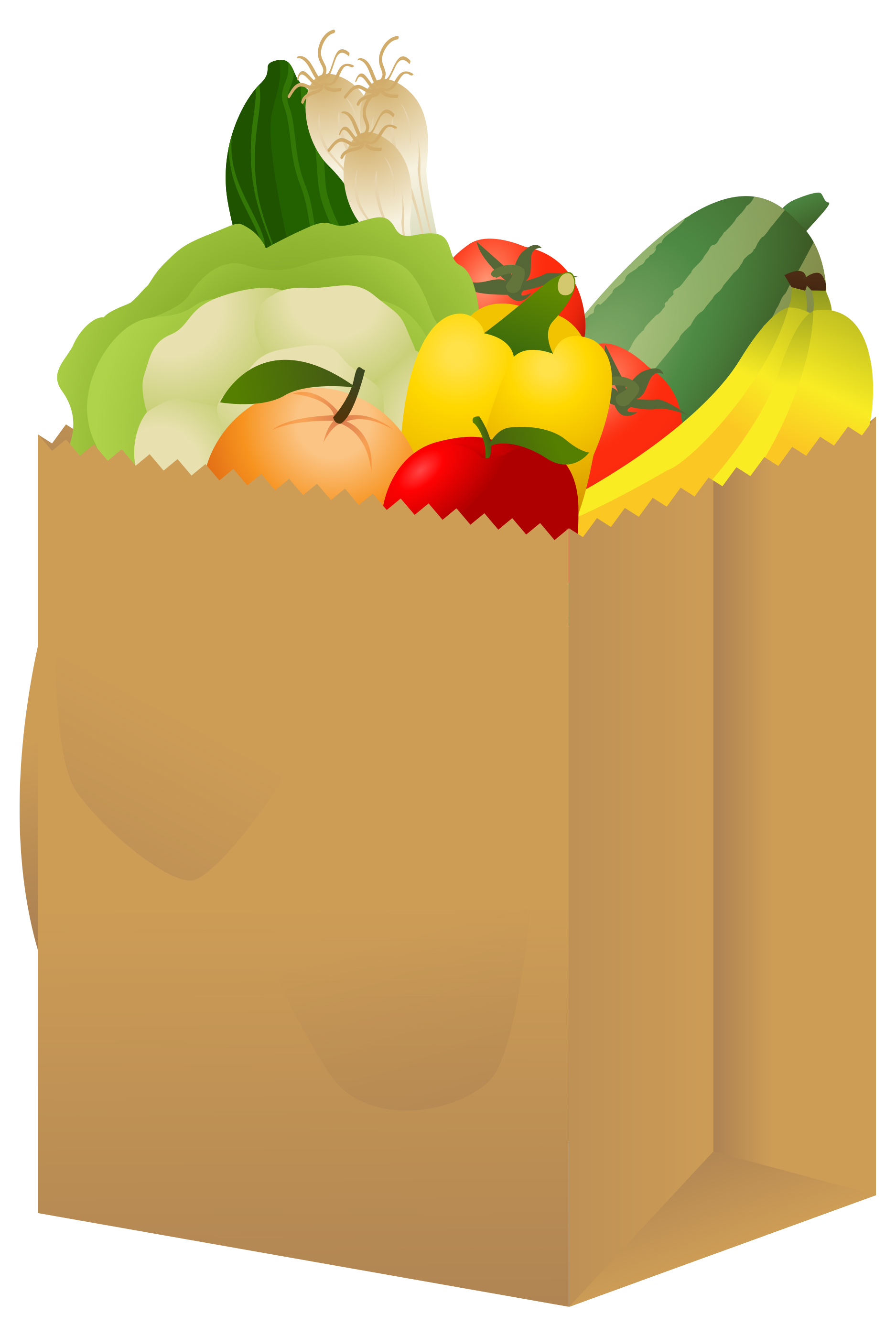 collection of shopping. Bag clipart illustration