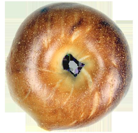 Bagel clipart baked goods. Plain bagels biz best