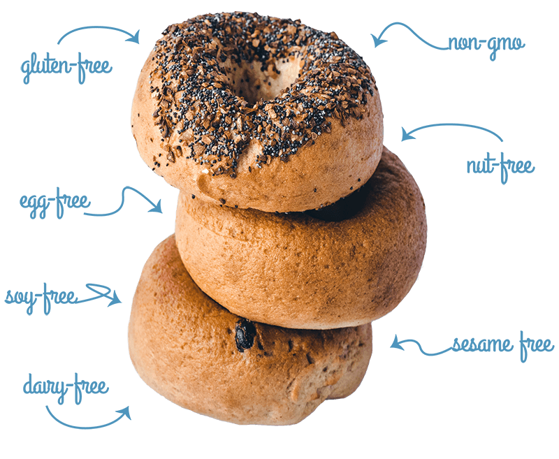 The greater knead gluten. Bagel clipart egg