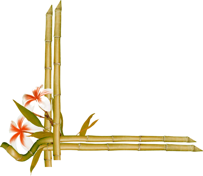 Paper bamboe flowers green. Bamboo border png