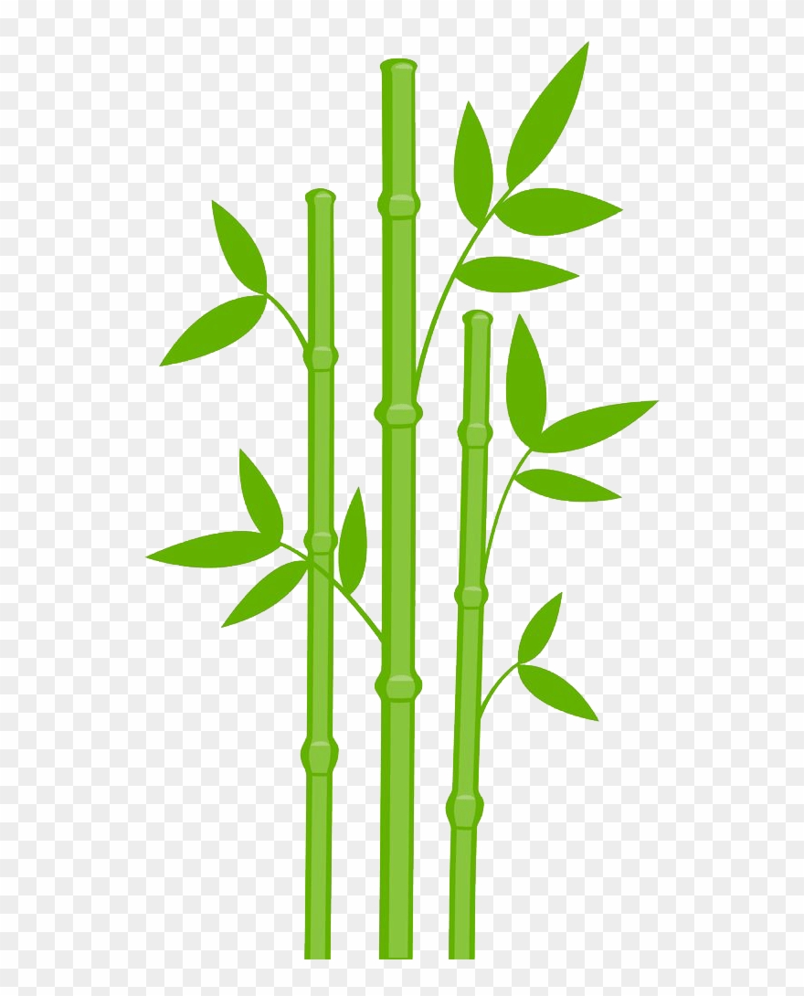 Png download pinclipart . Bamboo clipart
