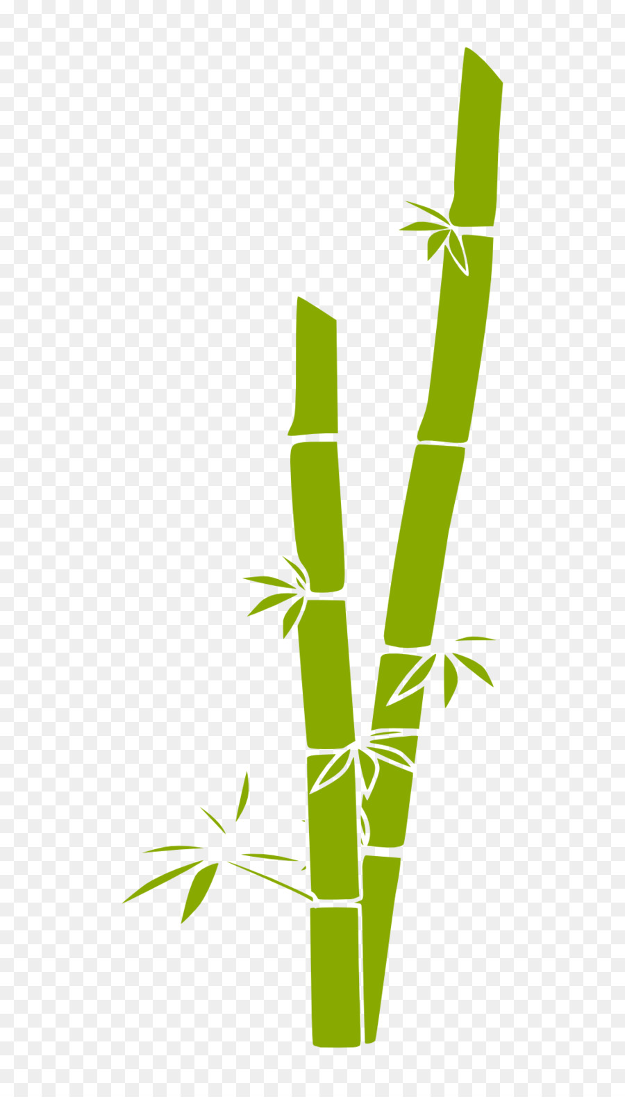 Bamboo clipart. Green grass background leaf