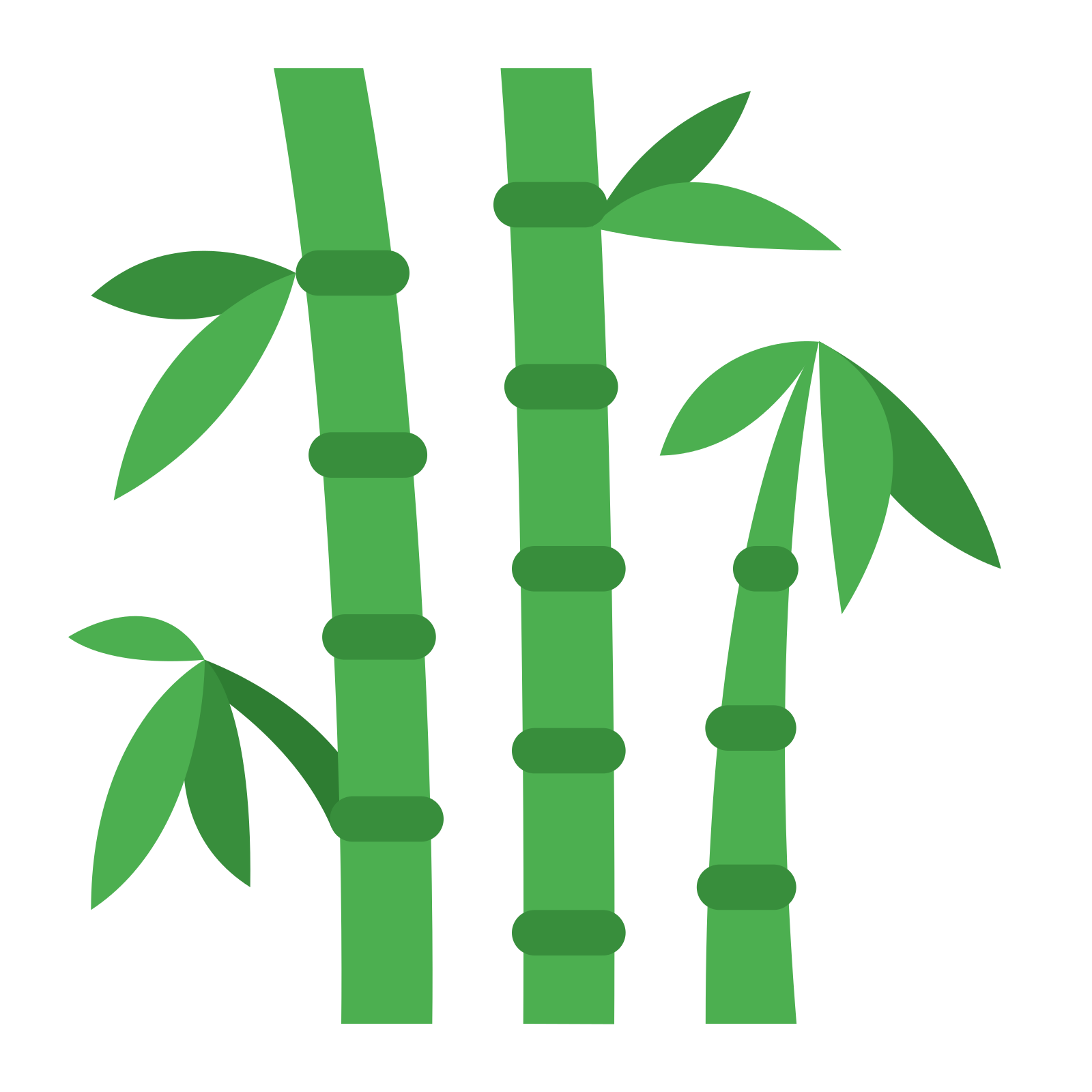 Pan clipart leaf. Bamboo png images transparent