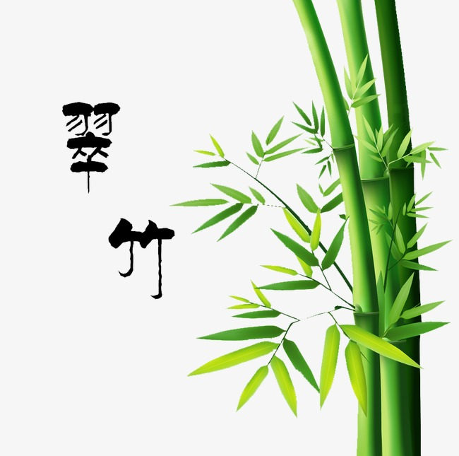 Bamboo clipart bamboo forest. Png image and for