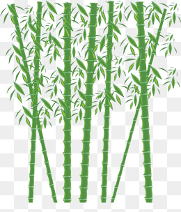 Green png images vectors. Bamboo clipart bamboo forest