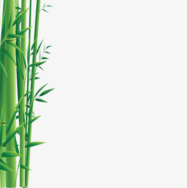 Green grove png image. Bamboo clipart bamboo forest
