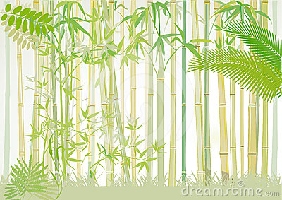 . Bamboo clipart bamboo forest