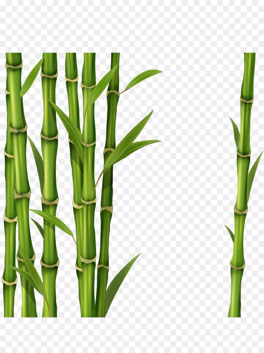 Bamboo clipart bamboo shoot. Banner kisspng com etq