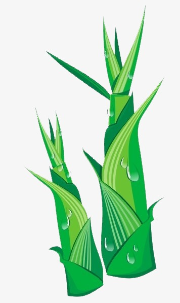 Bamboo clipart bamboo shoot. Png pngtree com element