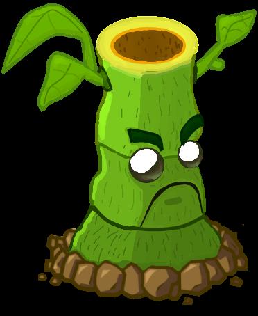 Vignette wikia nocookie net. Bamboo clipart bamboo shoot