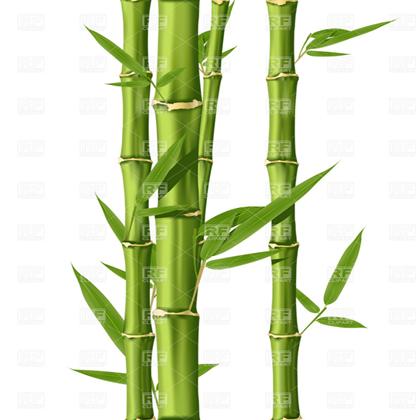 Bamboo clipart bamboo shoot. T rbxcdn com d