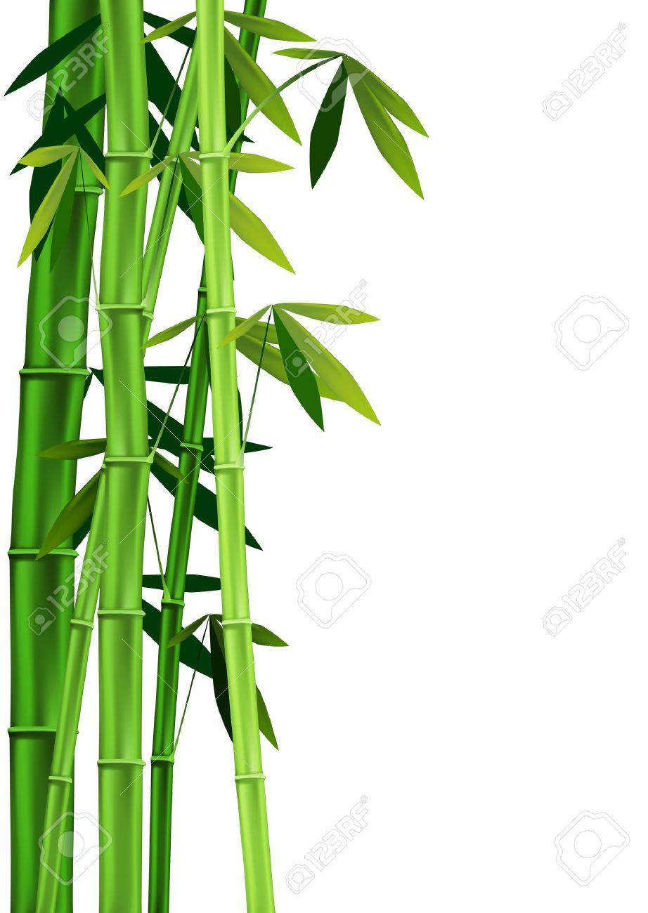 Bamboo clipart bamboo stalk. Portal
