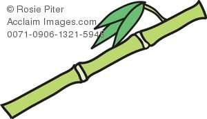 Bamboo clipart bamboo stalk. Clip art illustration of