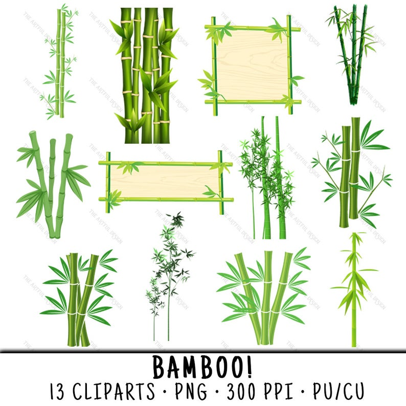 Bamboo clipart bamboo stem. Plant clip art png